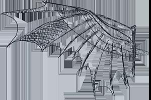 Scott Kraus - Da Vinci Wing